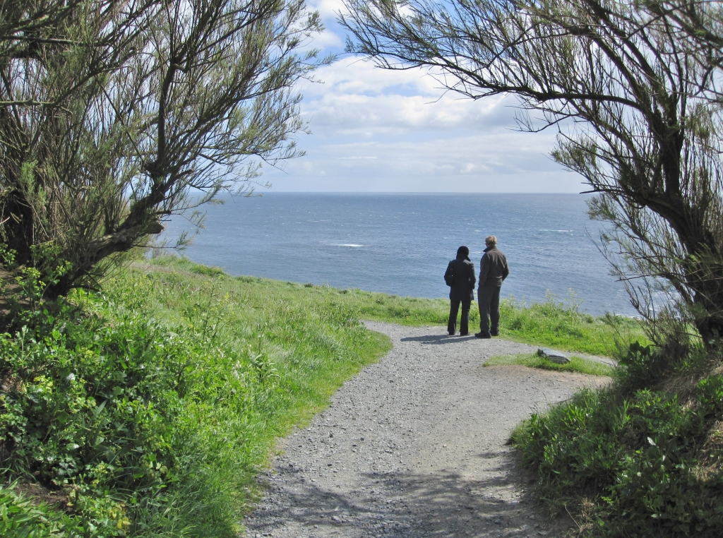Walking down from the carpark - hang a right to Lizard Point lookout, cafe etc