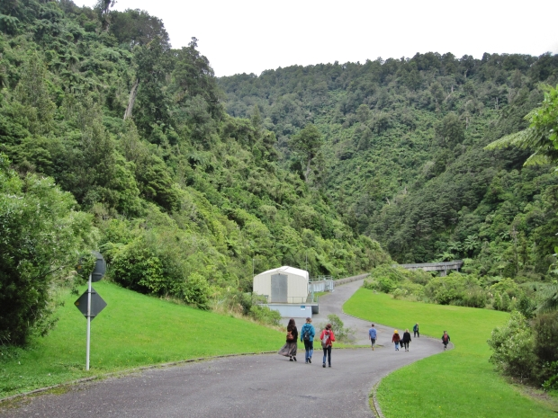 Walkway, Kaitoke Regional Park