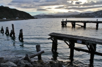 Wharf at Shelly Bay