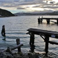 Wharf at Shelly Bay