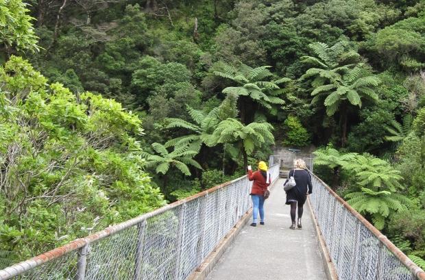 Bridge, Kaitoke Regional Park