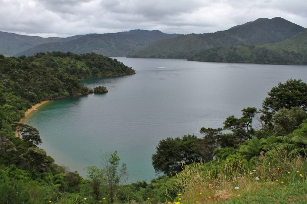 Queen Charlotte Sound - kinda makes you want a boat