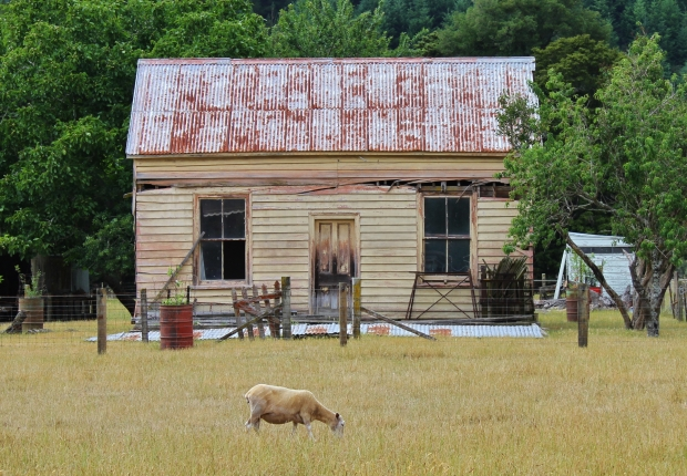 Abandoned house, Tasman