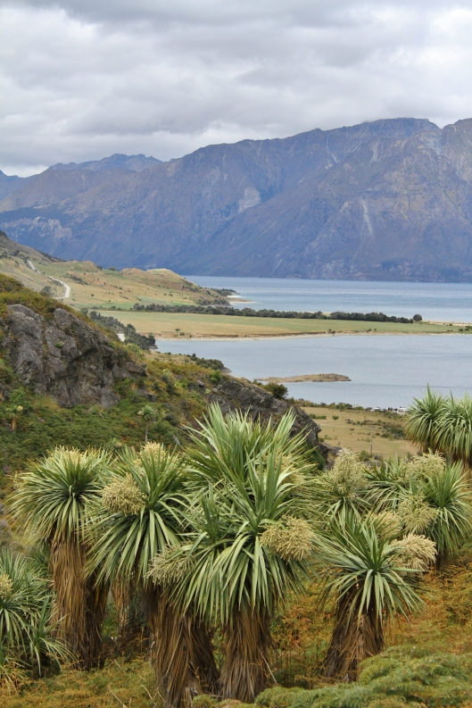 Lake Hawea from The Neck