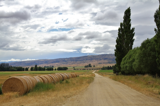 Central Otago metal road