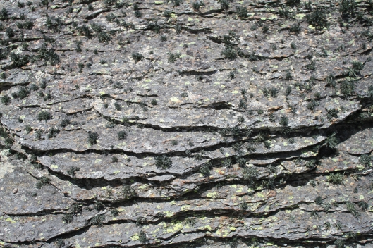 Schist magnified