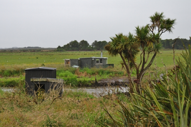Titiroa Stream whitebaiting huts