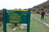 Walking on the old stock route between Lake Ferry and Wainuiomata