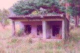 Abandoned kennels, Orongorongo Station