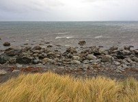 A windy Wainuiomata Coast