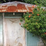 Shed, Orongorongo Station