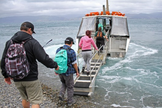 Boarding Kapiti Island ferry