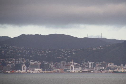Looking across to downtown Wellington on Sunday morning