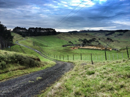 Rural road, South Kaipara Head