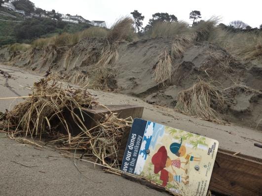 Sand dunes post-storm, Worser Bay