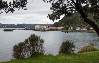 Shelly Bay Airforce Base