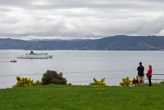 Wellington Harbour view