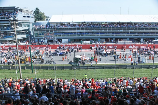 Our patch of the start grid
