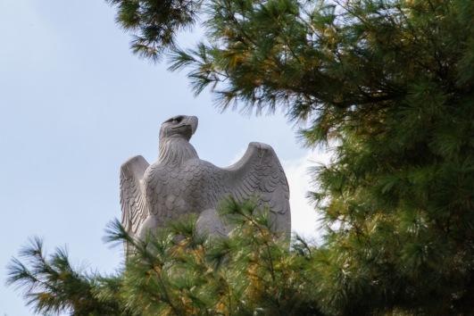 eagle on a post, washington