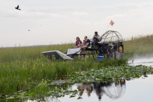 Airboat, Florida Everglades