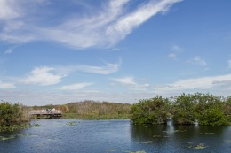 Anhinga Trail, Everglades National Park