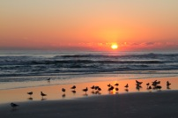 Daytona Beach sunrise