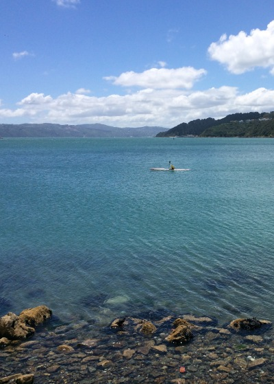 Kayaker, Evans Bay