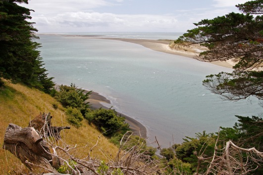 The Kaipara Harbour is one of the largest in the world and has a treacherous entrance because of shifting underwater sandbanks, which have caused the most shipwrecks of anywhere in NZ