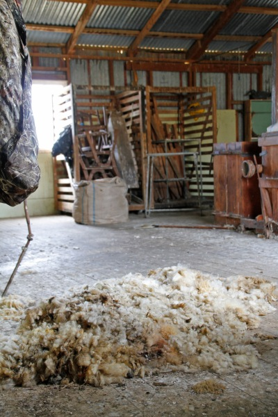 While not the hive of activity it once used to be, there are signs that it's still a functioning woolshed