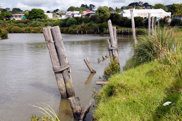 old wharf pilings, kaipara river