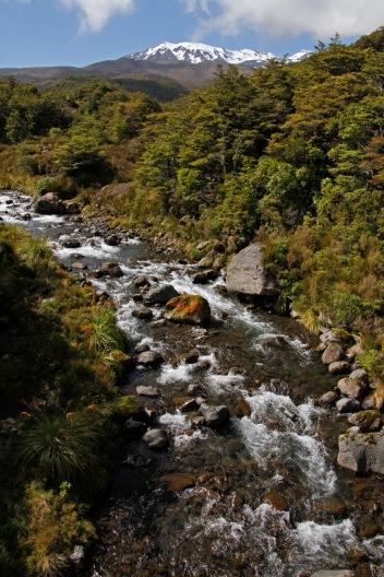 Ruapehu and Whakapapanui Stream