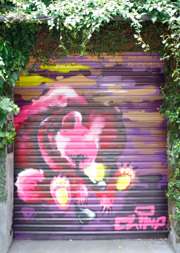 Street art by Chimp / garage door on Victoria St