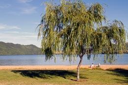 Boyes Beach Reserve, Lake Okareka