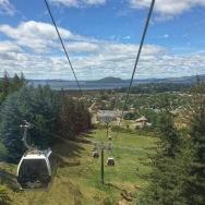 View from gondola, Rotorua
