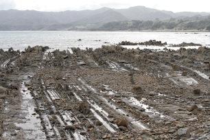 Shoreline rock formation Waihau Bay