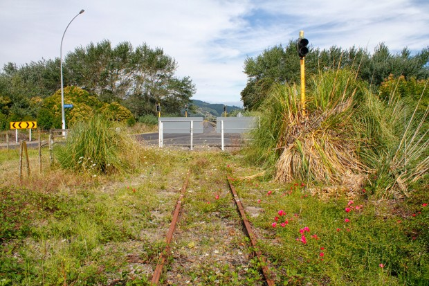 Taneatua Branch closed railway line by the Pekatahi Bridge