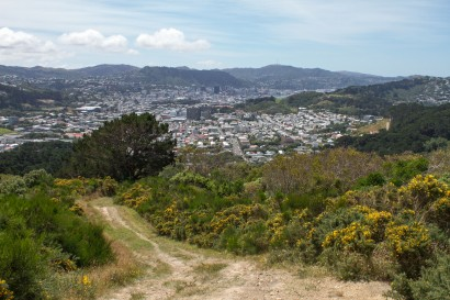 Looking over to the CBD and Mt Kaukau in the distance