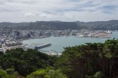 Wellington city and harbour from Mt Victoria