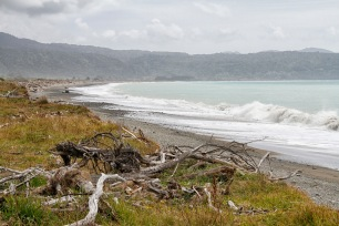 Kawakawa Bay and beach from Te Araroa