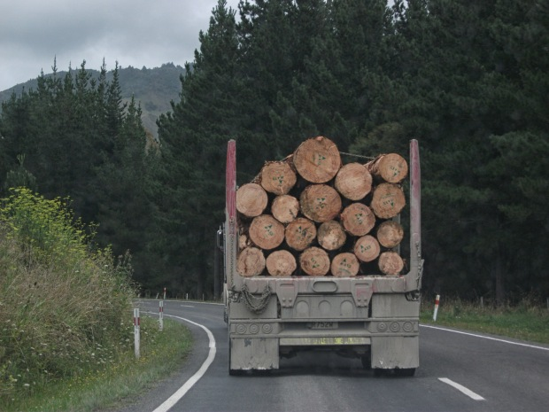 A fairly common site around the region - a logging truck off to the port in Gisborne.
