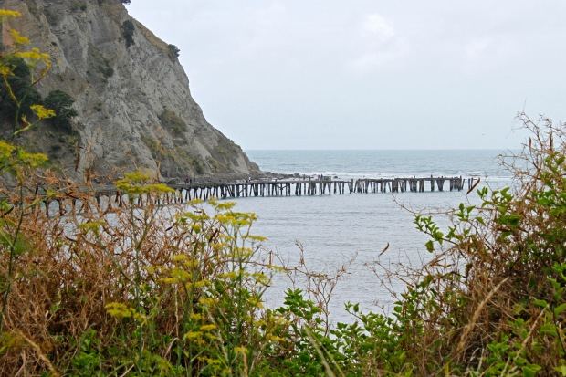 Tokomaru Bay wharf operated from 1911-1952 and mainly handled produce from the nearby freezing works.