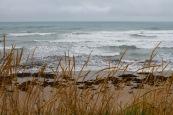 Horizon gazing at Wainui Beach
