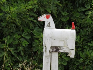 Dog letterbox