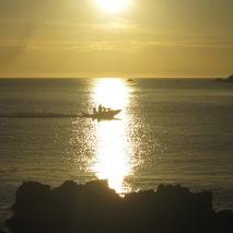 Boat returning to Tarakena Bay
