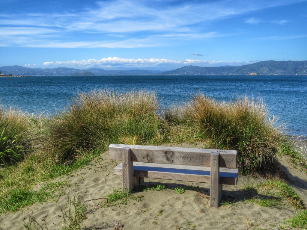 Wellington Harbour from Seatoun, New Year's Day 2015