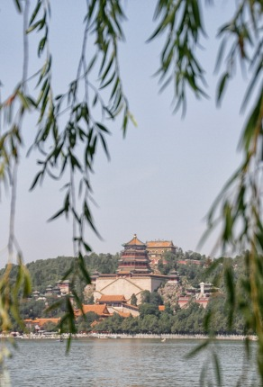 Looking across to Longevity Hill