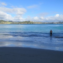 swimming at whale bay