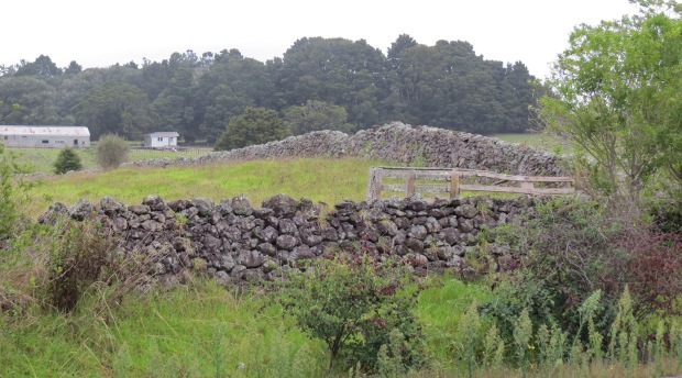 dry stone walls at glenbervie