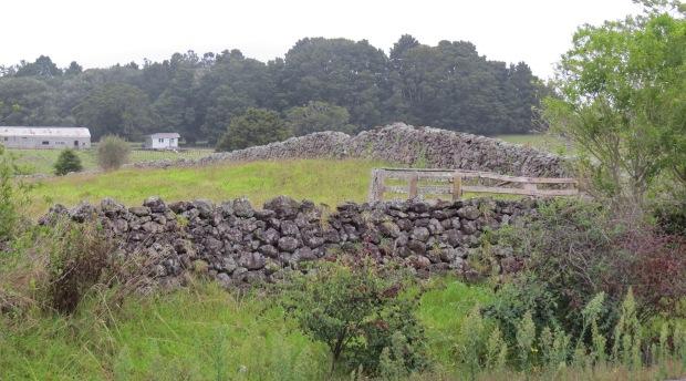 dry stone walls at glenbervie