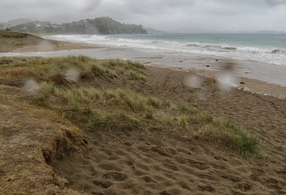 rain and wind at woolley's bay